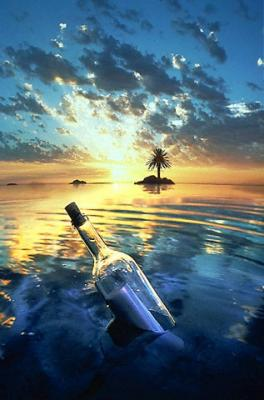 Pasa la imagen - Página 3 20090130215936-botella