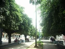 Parques de mi ciudad