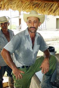 CUBA BUSCA AUTOABASTECERSE DE LECHE: MANTUA