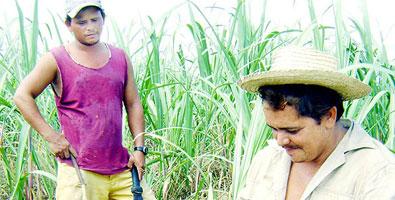 Jóvenes con la camisa sudada. Cuba